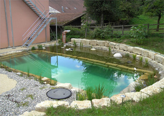 Piscina natural Bionova_Suiza