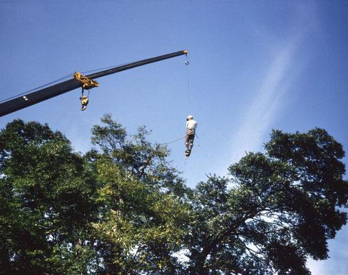 離れた木への移動は、クレーンのフックに足をかけて。飛び移る。