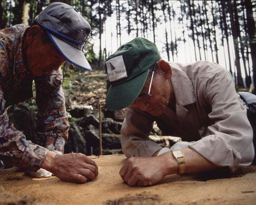落ちた樅の木上部の年輪を数え、樹齢による治療方法を樹医と共に検討。