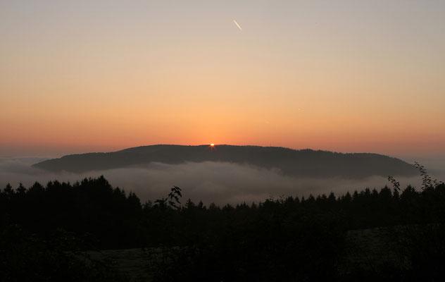 Kermeter/Eifel 2014