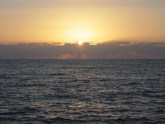 Marina di Palma 2004