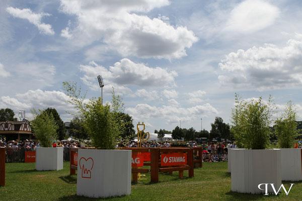 CHIO Aachen 2017 - Geländeprüfung Vierspänner...an Hindernis 1/Aachener Soers