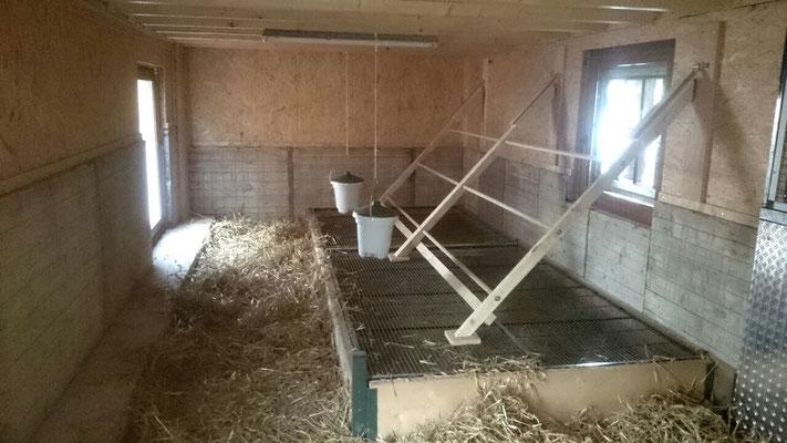 Der Stall noch gänzlich leer