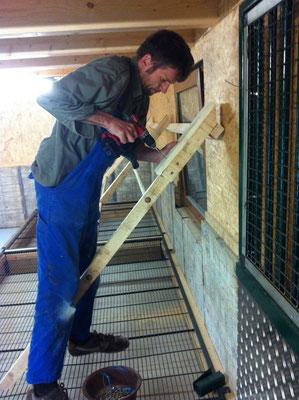 Die Sitzanlage der Hühner wird gebaut