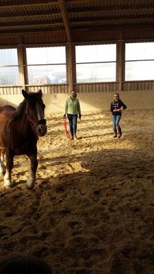 Steffi mit Goria und Ole