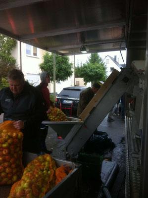 Die Äpfel werden von ihren Besitzern auf ein Förderband geschüttet. Hier werden sie in die Maschine transportiert und gewaschen