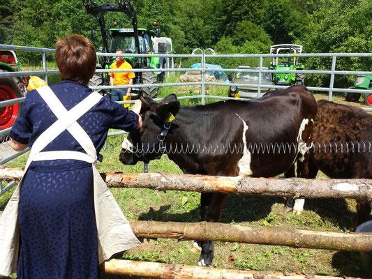 Die Organisatorin vom Heimatverein - Inge besucht die Kälbchen