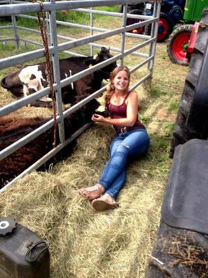Signe hält Siesta mit den Rindern