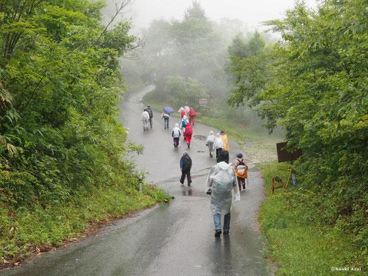 向かう道中も雨です