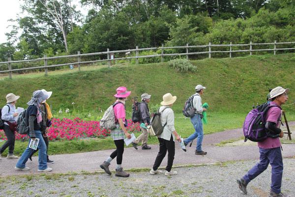 夏の企画展に合わせて 富士見台高原へチョウの観察会