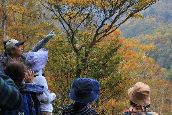 神坂峠越えツアーを開催しました