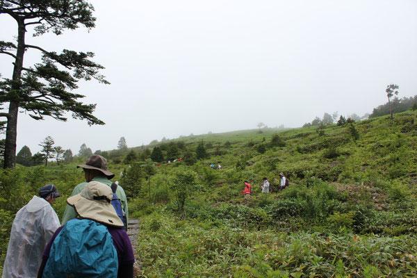 萬岳荘から富士見台高原までは約30分!雨やみました!