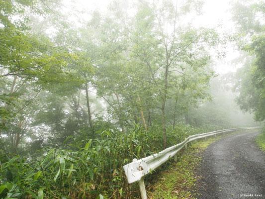 濃霧が立ち込めていました