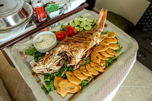 Ich wollte gerne frittierten Fisch essen, aber doch keinen Königsbarsch?! Den habe ich zwei Tage alleine gegessen, da Alissa keinen Fisch mag. Nur Fischstäbchen mag sie haha.