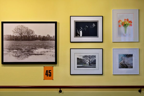 Foto: Hans-Joachim Reiter ++ Ausstellungsort Nr. 45 > Matthias-Claudius-Heim > Hans Joachim Reiter