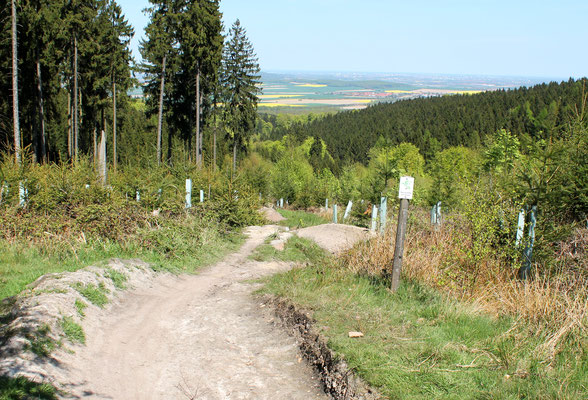 Ladies only Trail, Deister