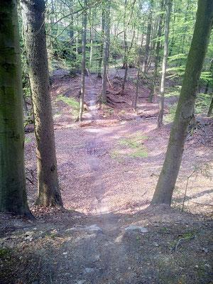 "Rampage im Trail ""Blaubeer"""