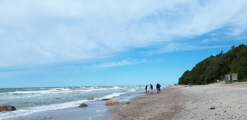 Der Wind hat sich gelegt, daher noch ein Spaziergang am Strand