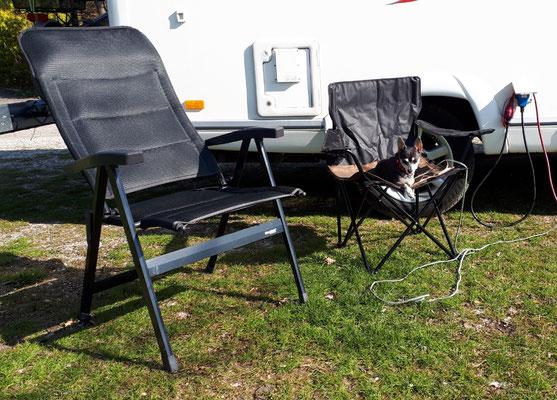 Barny hat jetzt seinen persönlichen Campingsessel. Hund von Welt:- ))