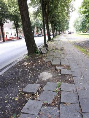 Besonderes maroder Gehweg an einer Hauptstraße