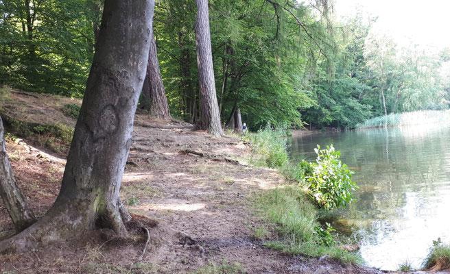 Die Fischteiche wurden von den Mönchen für ihre Fastenspeisen angelegt