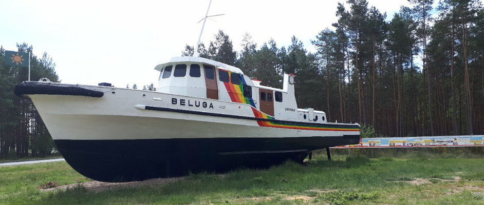 die Beluga von Greenpeace als Informationsstand