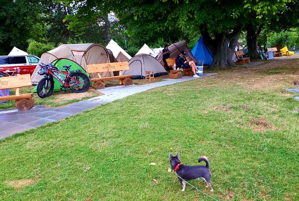 Zelt an Zelt, ist halt wenig Platz