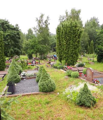 Ein riesiger Friedhof irgendwo im Wald