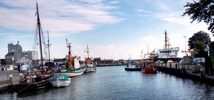 Der Museumshafen ist fast leer, die meisten Schiffe sind im Winterlager
