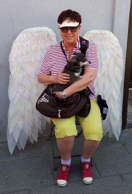 Ein gefallener Engel?