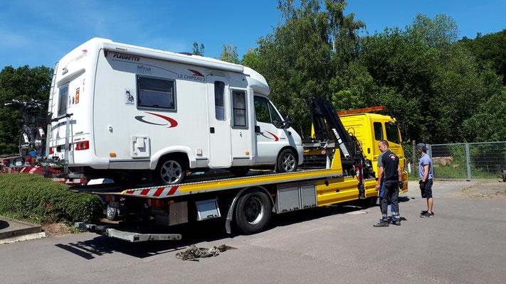 geschafft, Filou ist bereit für den Transport nach Hannover