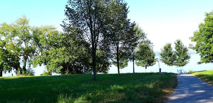 Weg vom Campingplatz zum Bodensee