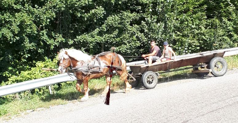 Ein völlig normales Transportmittel