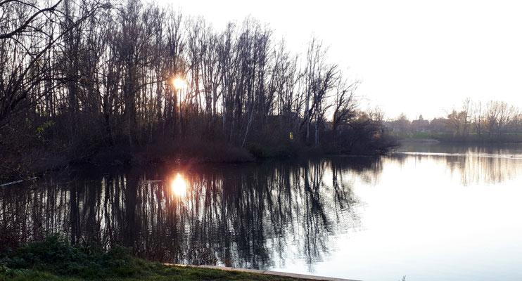 Der Vieneburger See