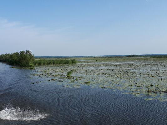 Wasserflächen