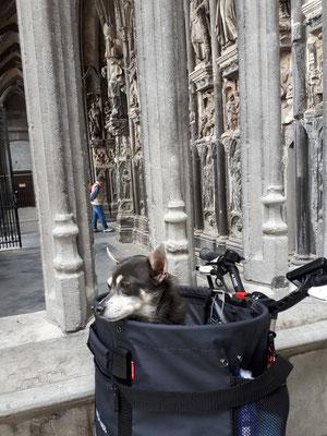 Barny vor der Kathedrale