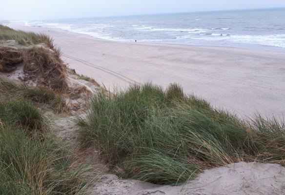 Geschafft, dort unten liegt die Nordsee zu unseren Pfötchen, unseren Füßen