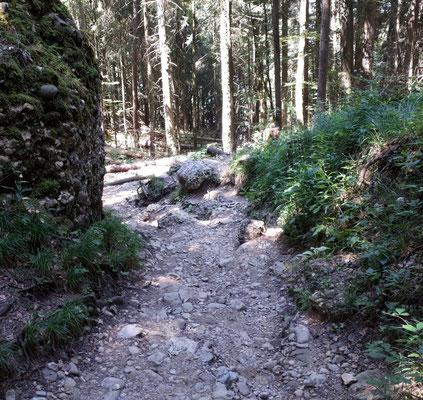 Der Wanderweg zur Talstation der Pfänderbahn sah überwiegend so aus