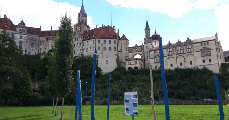 Blick von der Donau auf das Schloss, imposant