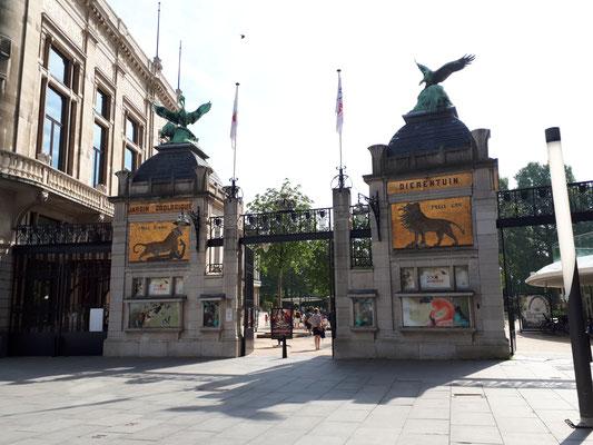 Der Zoo Antwerpen liegt direkt neben dem Central-Bahnhof, Eintritt für Barny verboten