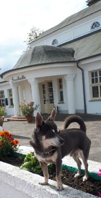 Prinz Barny vor seiner Strandhalle