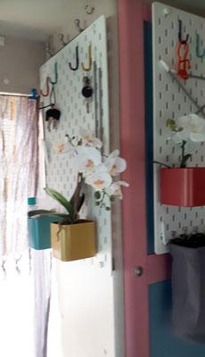 Haken und Töpfchen für Gedöns und immer blühende Orchideen
