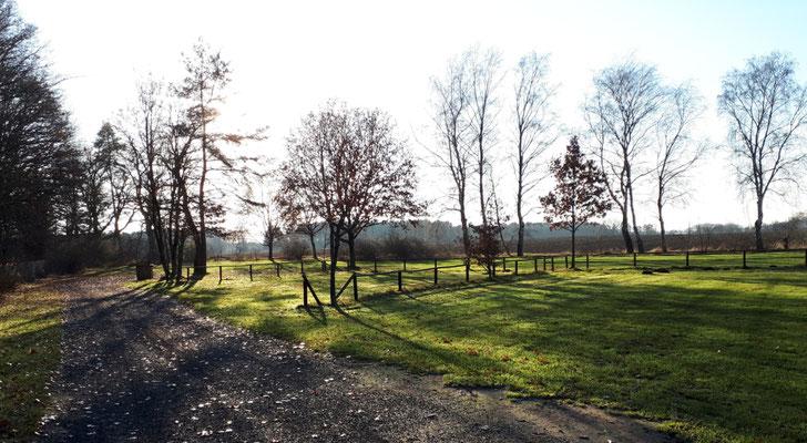 Ortswechsel, Parkplatz am Wildpark in Müden (Örtze)