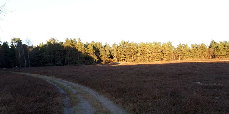 hier gibt es noch mehrere Hügelgräber
