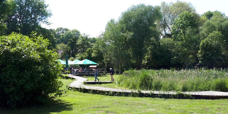 Moorgarten/Cafe in Hagenburg