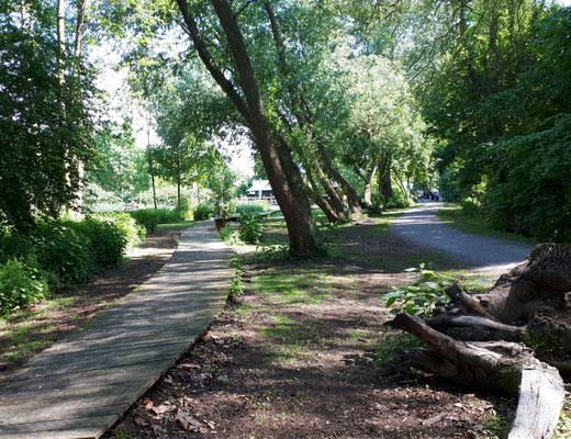 Moorgarten in Hagenburg