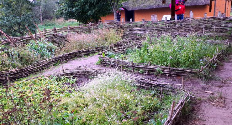 Nutzgarten der Wikinger