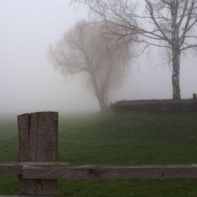 08:00 die Weser versteckt sich im Nebel