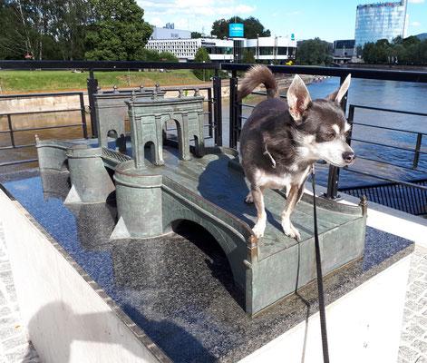 """Barny auf der """"alten Brücke"""""""