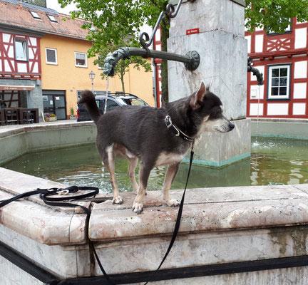 Kleine Pause am Brunnen